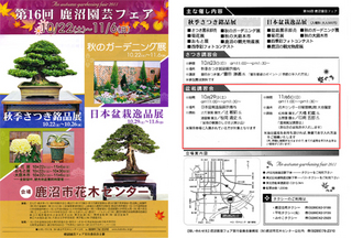 pdf_link.jpg